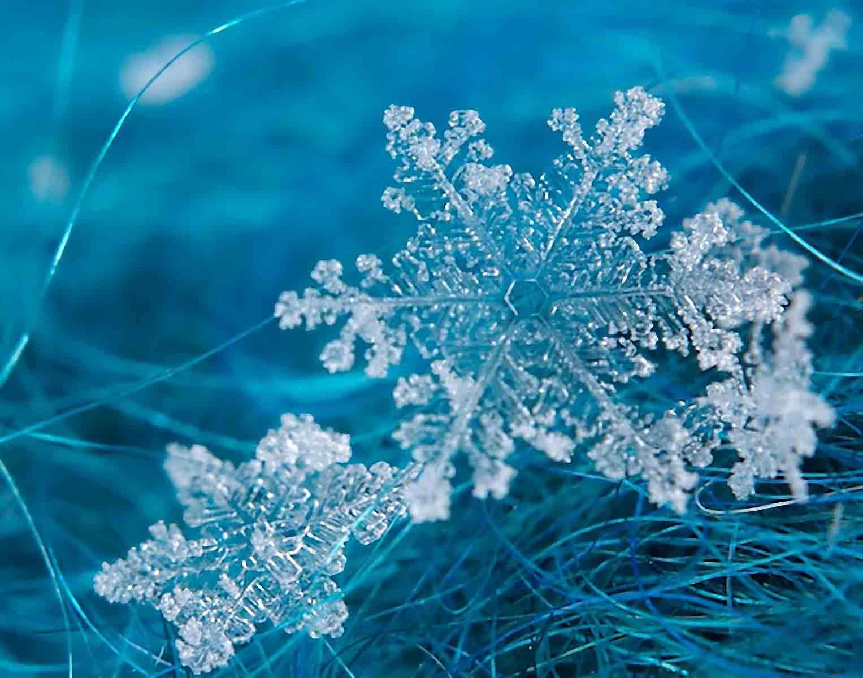雪花.jpg